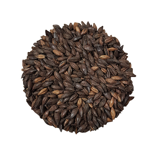 Chocolate Dark Malt
