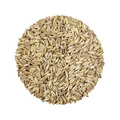 Oat Malt | Viking Malt