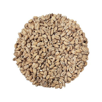 Wheat Malt | Crisp
